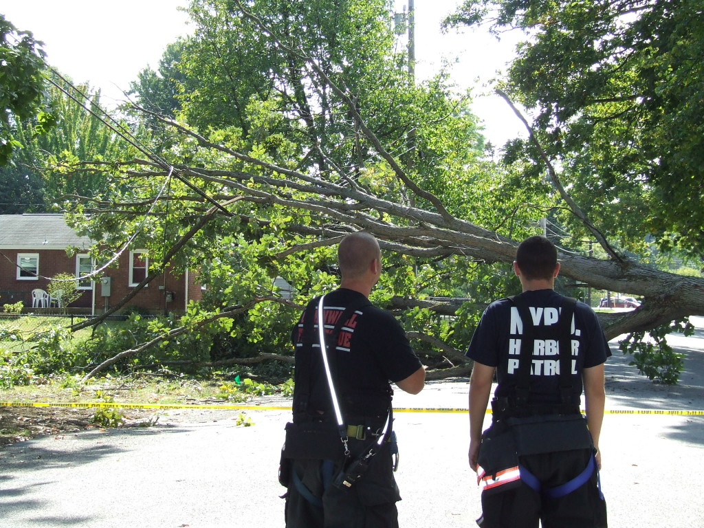 A tree blocks Maple Street and took down power lines on the other side. As of 3:30 p.m., Central Hudson was on the scene, but the tree had not been removed.