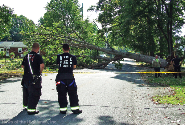 Photo by Jason Kaplan Shortly before 2:30 p.m. on Sept. 23, a tree fell on Maple Street knocking down power lines and cutting electricity to 15 homes. Once Central Hudson made repairs to the line, the Town of Cornwall Highway Department removed the tree. Rotted roots were the cause of the tree's demise.