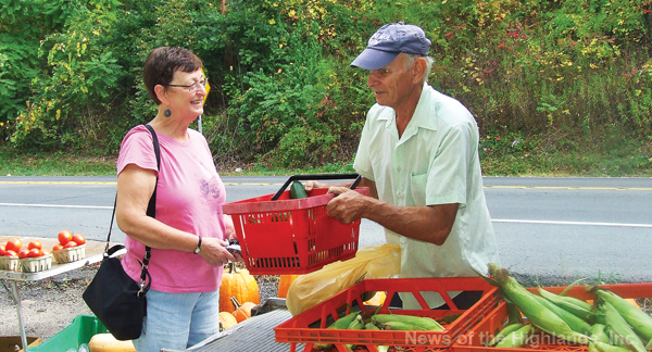 Photo by Ken Cashman Carol Sauer, a former Lee Road School teacher, chats with cousin Marty Sauer while she fills a basket with his produce on Saturday morning. Due to safety concerns, Mr. Sauer will have to find another location for his farmstand truck.