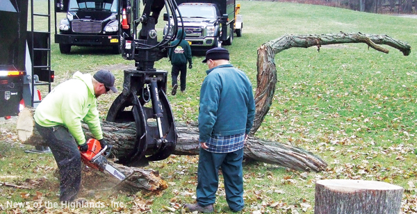 Photo by Jason Kaplan Cornwall Central School District's Jerome Pincoske observes as Scott, an employee with Flanagan Tree Service, makes a cut into a tree trunk. Using a tree from behind Cornwall-on-Hudson Elementary, Flanagan created a natural outdoor play area at the school for climbing and leaping.